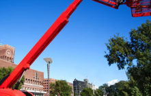 Tree Removal Services – Focusing on the cost