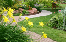 6 Landscape Strategies that Enhance Home Security